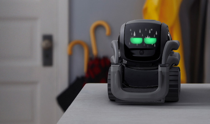 Vector – The Helpful Little Guy Robot-GadgetAny