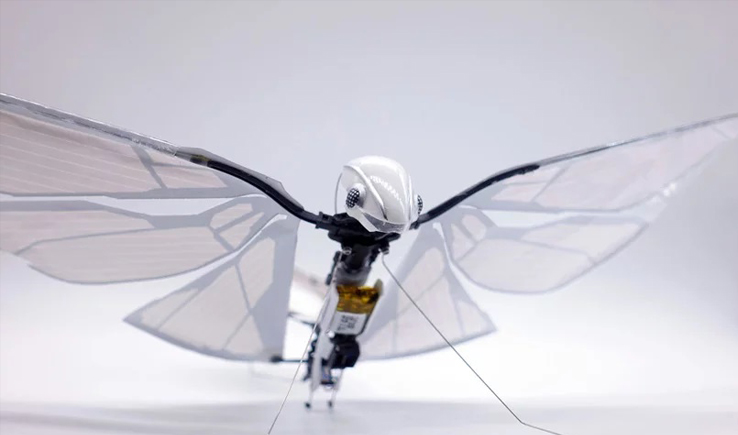 Metafly Robotic – time to experience flight like never before-GadgetAny