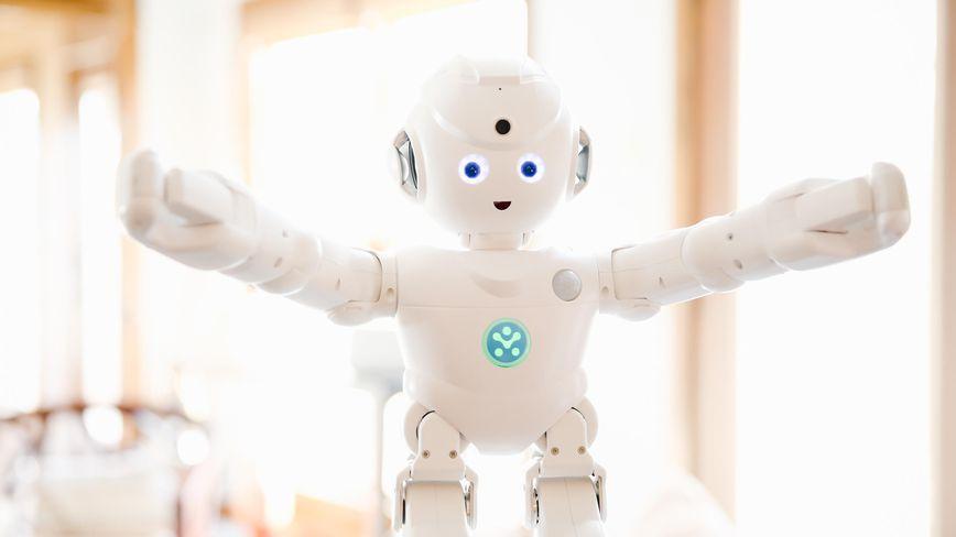 Lynx Humanoid Robot