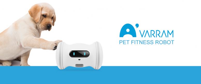 A Smart Robot For Your Pet – VARRAM