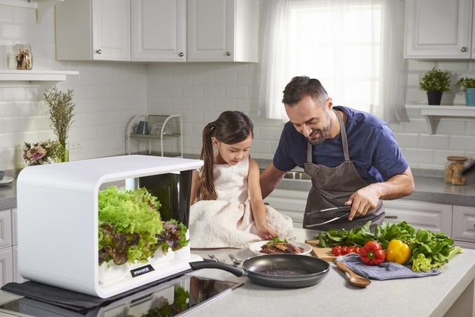 aspara: The Smart Indoor Kitchen Garden-GadgetAny